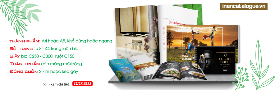 IN ẤN CATALOGUE.VN
