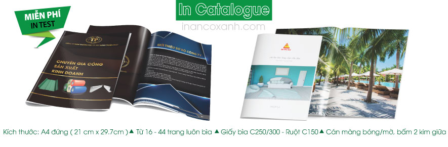 in catalogue dep
