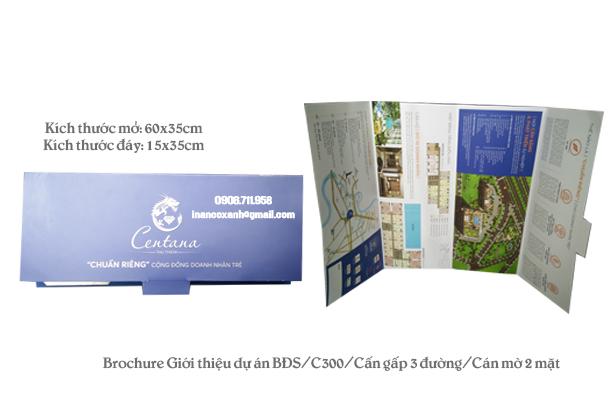brochureduanbds